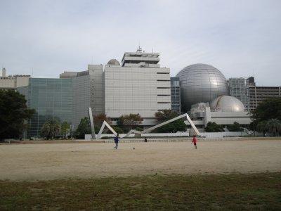 20101017d.jpg